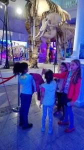 vizita-la-muzeul-antipa-4