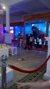 vizita-la-muzeul-antipa-5
